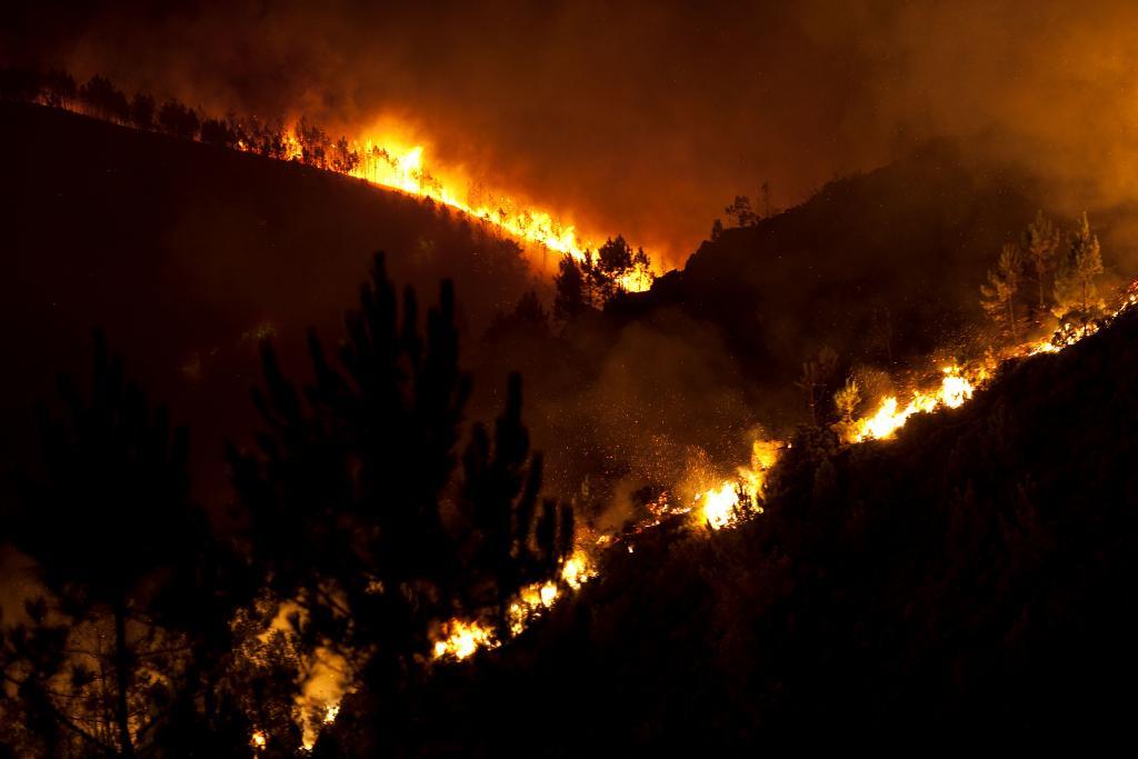 Alerta/pedido combate a incendios